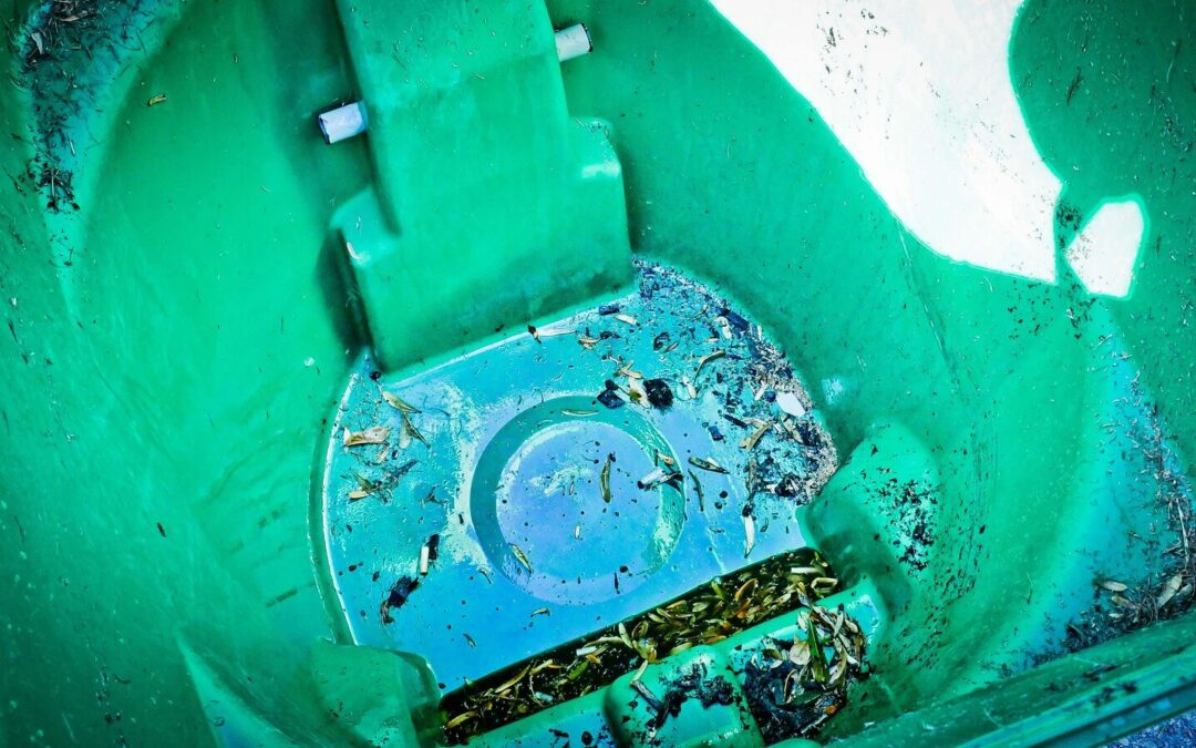 These Rodents & Germs Could Be in Your Dirty Trash Bins