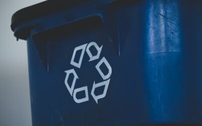 Top Reasons Why You Need a Trash Bin Cleaning Service